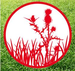Укладка травы в покос